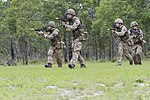 Red Falcons team up with British 3 PARA 140722-A-DP764-292.jpg