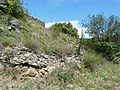 Rià i Cirac. Rià. Castell de Rià 2.jpg