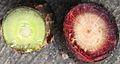 Ribes rubrum wood.jpg