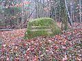 Ritterstein 197 Hier stand das Reissler Forsthaus.JPG