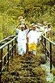Ritual larung sesaji Gunung Kelud.jpg