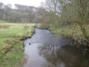 River Barle - The Barle at Simonsbath