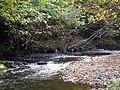River Derwent - geograph.org.uk - 1551215.jpg