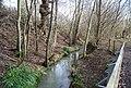 River Line, Lower Hucksteep Wood - geograph.org.uk - 1726952.jpg