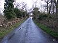 Road to Blaxhall - geograph.org.uk - 1221024.jpg