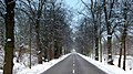 Road with snow and trees (15944113598).jpg