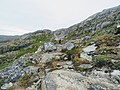 Rocky trail Lake Tasersuaq hike Qaqortoq Greenland.jpg