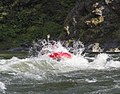 Rogue River (17420890589).jpg