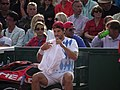 Roland Garros 2012 - Tommy Haas (15992958305).jpg