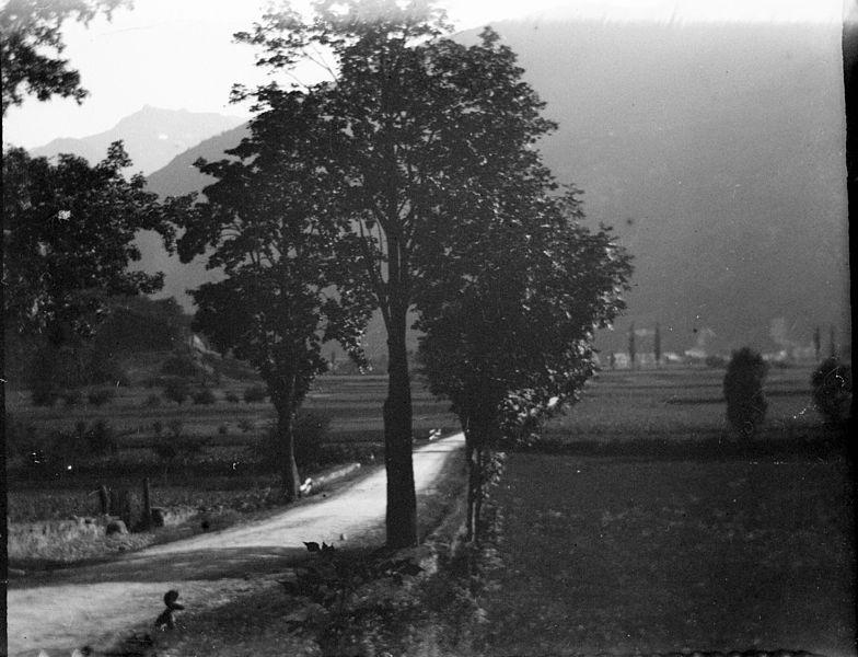 Fonds Trutat - Photographie ancienne  Cote: TRU C 250 Localisation: Fonds ancien Original non communicable  Titre: Route de St. Mamet (vue prise de Montauban), Luchon [environs], 1 sept. 1895. Série A. Hanau n° 6  Auteur: Trutat, Eugène Rôle de l'auteur: Photographe  Lieu de création: Bagnères-de-Luchon (Haute-Garonne; canton) Date de création:: 1895  Mesures: 5 x 6 cm  Mot(s)-clé(s):  -- Route -- Arbre -- Muret -- Pierre -- Prairie -- Montagne  -- Montauban-de-Luchon (Haute-Garonne) [Mention / citation] -- Saint-Mamet (Haute-Garonne) [Mention / citation] -- Pique (France; vallée) -- Luchonnais, Massif du (France)  -- 19e siècle, 4e quart  Médium: Photographies -- Négatifs sur verre au collodion -- Noir et blanc -- Paysages   Bibliothèque de Toulouse. Domaine public