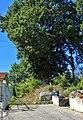 Roverella contrada Fonte Coda - Campobasso.jpg