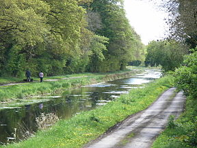 Royal Canal Westmeath.jpg