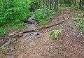 Ruisseau des Palanges (2).jpg