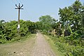 Rupnarayan Embankment Road - Mellock - Howrah 2014-10-19 9867.JPG