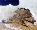Russia's Lena River Delta as seen by Envisat ESA215233.tiff
