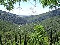 SAN MIGUEL DE LA VICTORIA 3 - panoramio.jpg