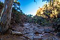 Sacred Canyon, Flinders Ranges (Explored) - South Australia.jpg