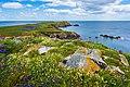 Saltee Island Great, Ierland (Unsplash).jpg