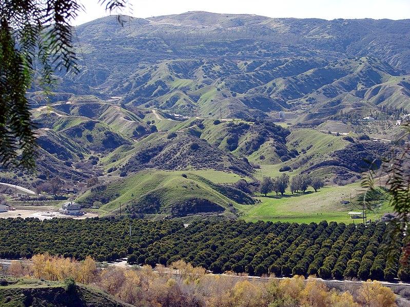 File:San Timoteo Canyon Groves, Redlands, CA 8-2011 (6836926431).jpg