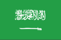 Saudi arabia flag large.png