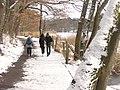 Schlachtensee - Winterlicher Rundweg (Wintry Circular Path) - geo.hlipp.de - 33186.jpg