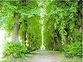 Schlosspark - panoramio.jpg