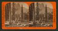 Sentinel Rock, Yo Semite Val, by Bierstadt, Charles, 1819-1903 2.png