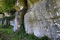 Sers 16 Falaise calcaire Crétacé 2014.jpg