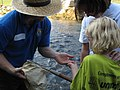 Service biologist showing students an aquatic macroinvertebrate (5029720226).jpg