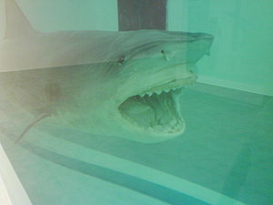 The Physical Impossibility of Death in the Mind of Someone Living - Image: Shark 84