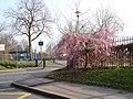 Sheldwich Primary School - geograph.org.uk - 384829.jpg