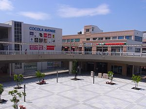 Shintoyohashi Station 110722.jpg