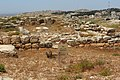 Shomronim, Shechem, Har Beracha, Shomron, Palestine 32.jpg