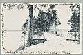 Sikoinleuka, Kivisilta, 1910s PK0351.jpg