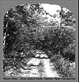 Silent Way in Keene New Hampshire (4641554475).jpg