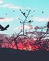 Sky (Unsplash).jpg