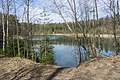 Small lake in the forest between Olgino and Lisy Nos, 2nd of May 2020.jpg