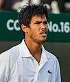 Somdev Devvarman 5, 2015 Wimbledon Qualifying - Diliff.jpg