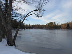 South end of Tuxbury Pond, Amesbury MA.jpg