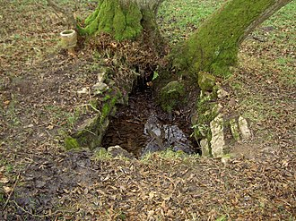Llandegla - St Tecla's well. Its use was discouraged by the church after the 19th century