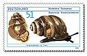 Stamp Germany 2002 MiNr2265 Bauchige Windelschnecke.jpg