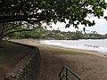 Starr-120606-7029-Terminalia catappa-habit view ocean-Hana Bay-Maui (25051421091).jpg