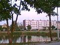 Staw przy ul. P.C.K. - panoramio.jpg