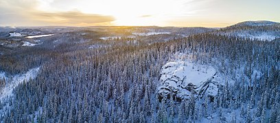 Stenbithöjden Nature Reserve, Sweden.jpg