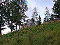 Stone head - panoramio.jpg