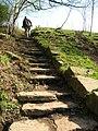 Stone steps on footpath to Rivington - geograph.org.uk - 1249209.jpg