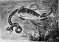 Strange Creatures of the Past - The Flat-Tailed Plesiosaur.png