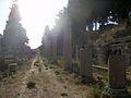 Street in Ephesus (3).jpg