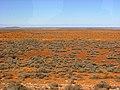 Stuart Highway (near Woomera) - panoramio - Frans-Banja Mulder.jpg