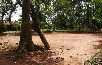 Ogere Remo - Students prep tree at Ositelu Memorial College